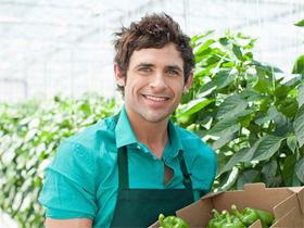 Alimentación Ecológica y Sostenible