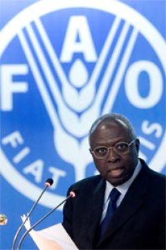 FAO - Jacques Diouf